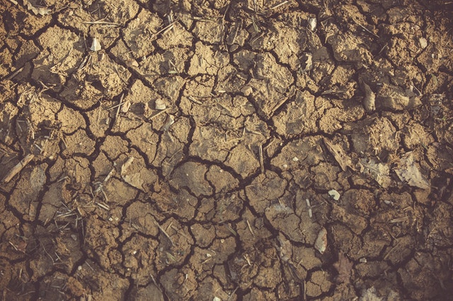 Land degradation as one of the effects of climate change on the environment