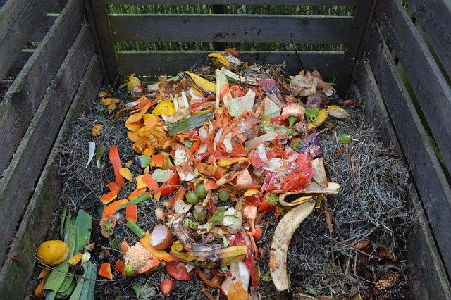 Composting as an eco friendly tip for thanksgiving